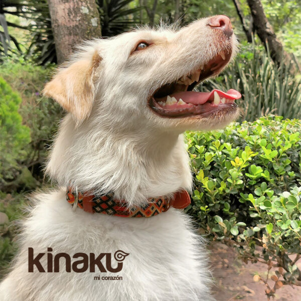 KINAKU Collars and dogs accesories handmade from Mexico Collar Bacalar Gallery 1