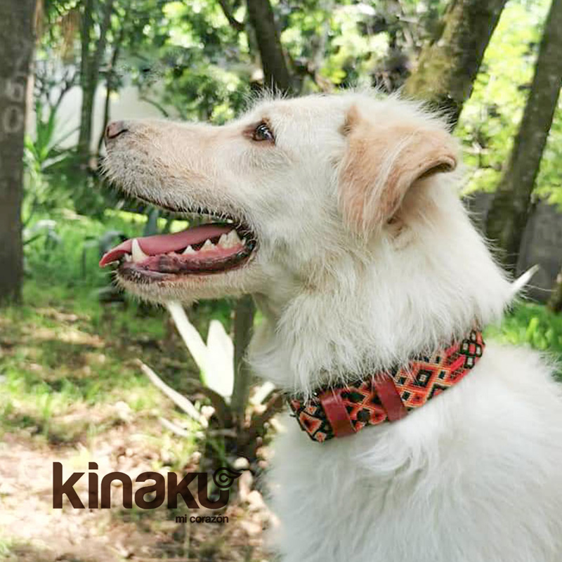 KINAKU Collars and dogs accesories handmade from Mexico Collar Bacalar Gallery 2