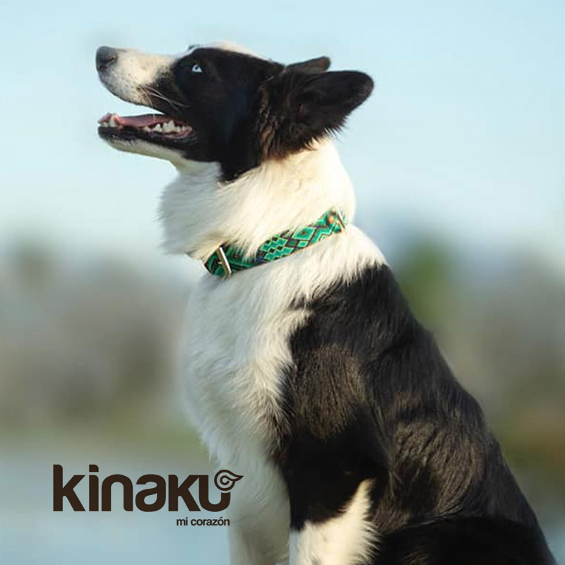 KINAKU Collars and dogs accesories handmade from Mexico Collar Becan Gallery 1