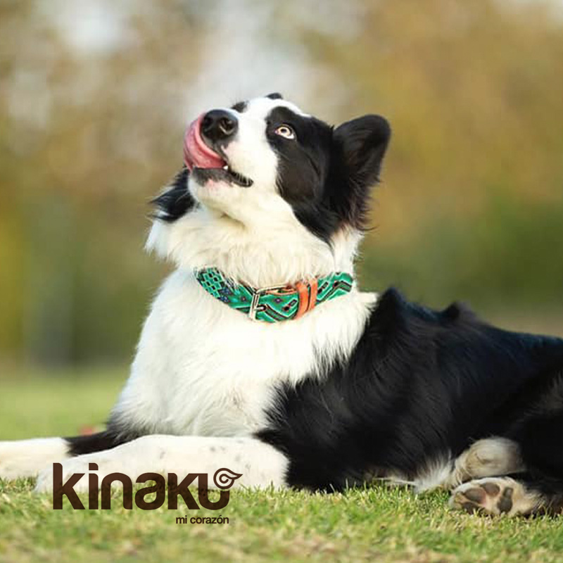 KINAKU Collars and dogs accesories handmade from Mexico Collar Becan Gallery 2