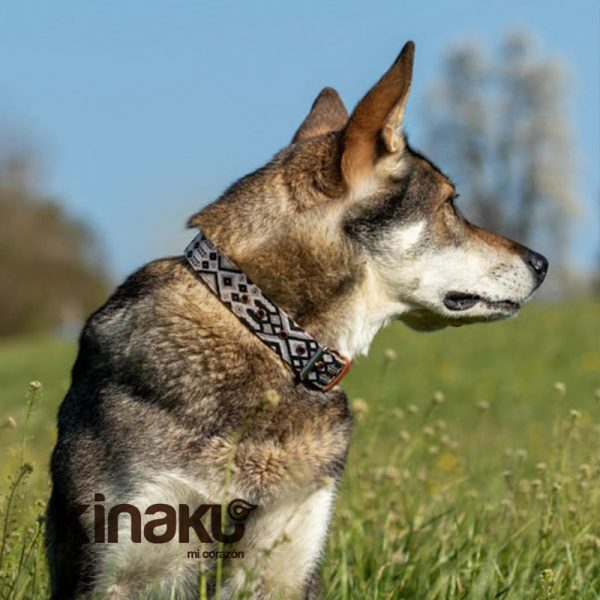KINAKU Collars and dogs accesories handmade from Mexico Collar Coba 4