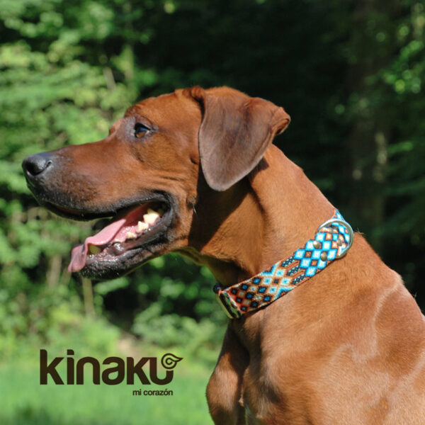KINAKU Collars and dogs accesories handmade from Mexico Collar Nayarit Gallery 1