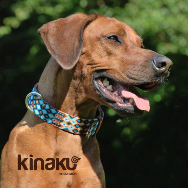 KINAKU Collars and dogs accesories handmade from Mexico Collar Nayarit Gallery 2