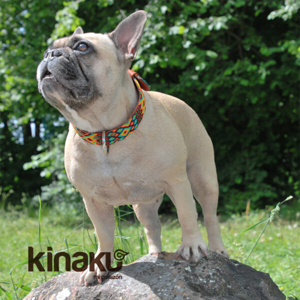 KINAKU Collars and dogs accesories handmade from Mexico Collar Suytun Gallery 2