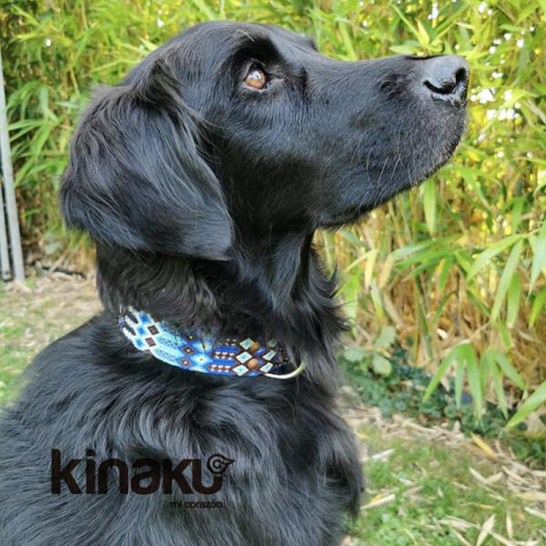 KINAKU Collars and dogs accesories handmade from Mexico Collar Tulum Gallery 4