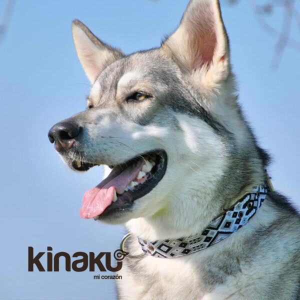 KINAKU Collars and dogs accesories handmade from Mexico Collar