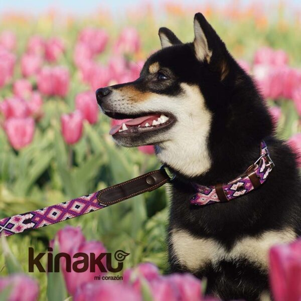 KINAKU Collars and dogs accesories handmade from Mexico Collar Cozumel Gal2