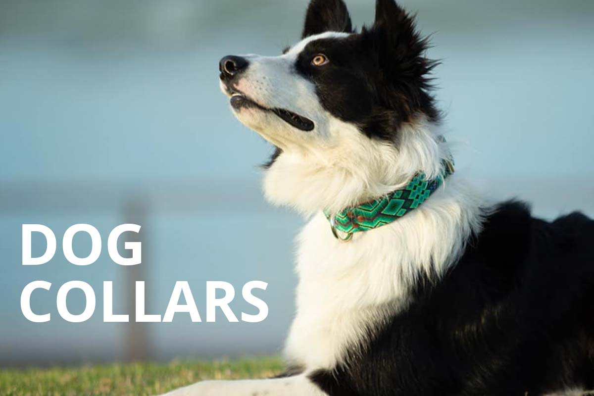 KINAKU Collars and dogs accesories handmade from Mexico Dog Collars2