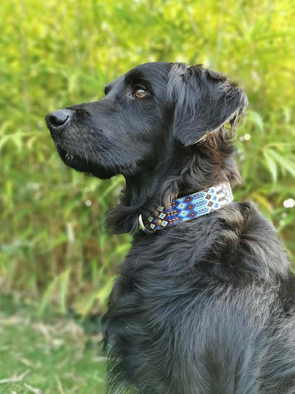KINAKU Collars and dogs accesories handmade from Mexico Gallery 3