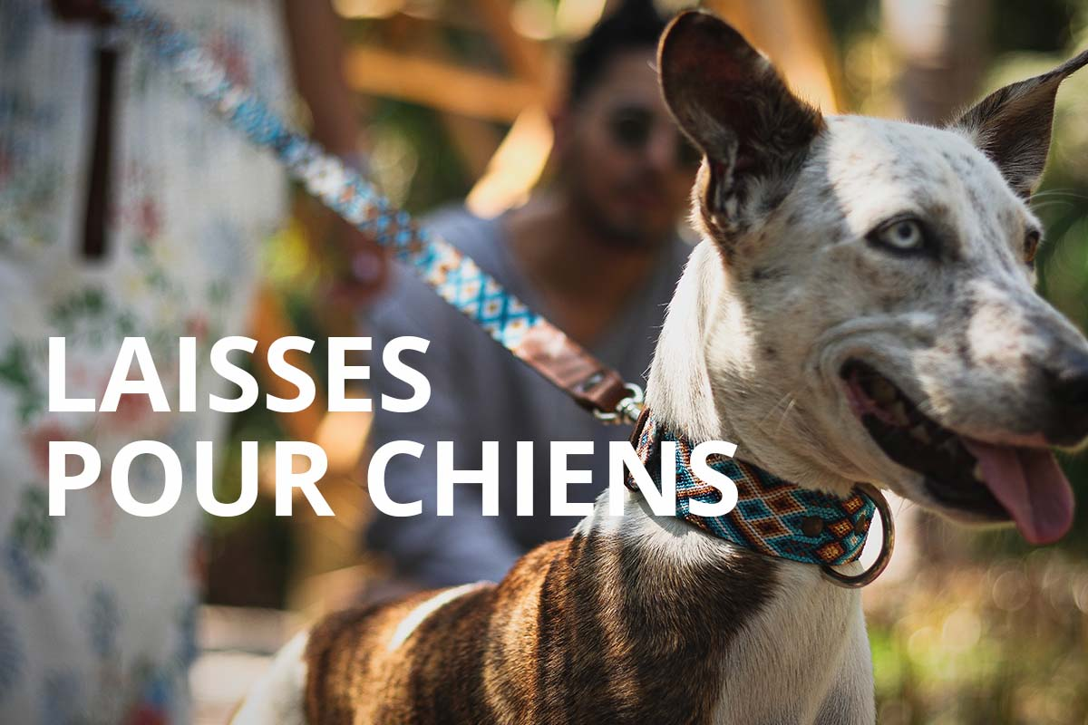 KINAKU Collars and dogs accesories handmade from Mexico LAISSES